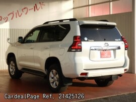 TOYOTA LAND CRUISER PRADO TRJ150W Big2